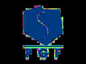 animacje bydgoszcz organza dla PGF